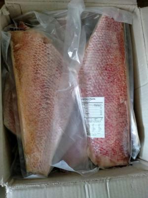 Filet Kakap