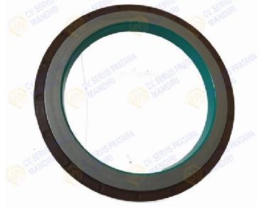 Sealing Ring(20832385)