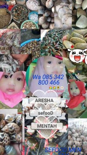 Aresha Seafood Mentah